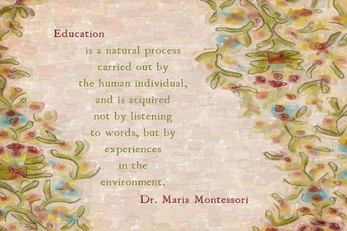 Education is a natural process carried out by the human indivdual, and is acquired not by listening to words, but by experiences in the environment. ~Dr Maria. Montessori